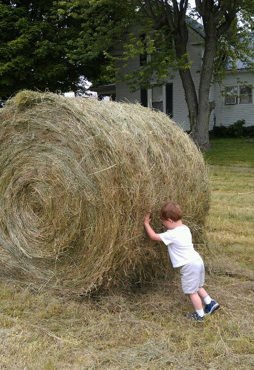 rolling Hay, little boys